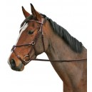 Cavallino Mexican Grackel Bridle